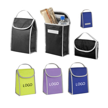 Folding Non Woven Insulated Lunch Bag